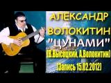 Александр Волокитин - ЦУНАМИ (В.Высоцкий, А.Волокитин) (Запись 15.02.2012)