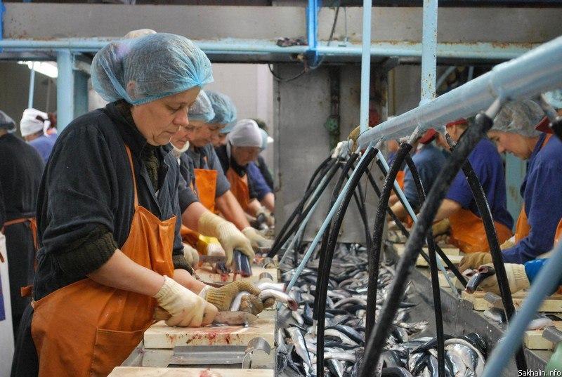 Россельхозбанк профинансировал инвестиционную программу рыбзавода под Таганрогом