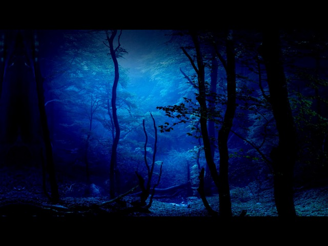 Dark drone ambient black04 spooki faeri