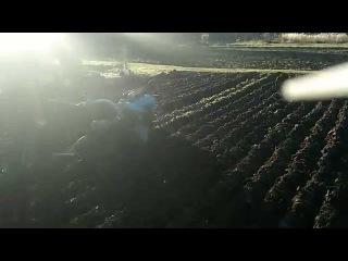 Мотоблок МТЗ-12 осенняя вспашка 2015 (часть 2). Развальная борозда.