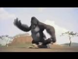 Ну очень смешной мультик про смешную обезьяну, смотреть бесплатно - YouTube