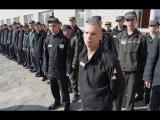 Малолетка авторитеты, блатные, петухи все в одном месте на зоне и тюрьме