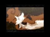 Animash - Warriors cats - Дорога