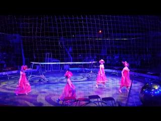 Танго в Пермском цирке в клетке тигров