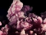 Футаж Цветной дым 1
