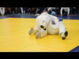 Бой за 1 место. Соревнования 14-15 ноября 2015 г. по рукопашному бою. Победа Константина.