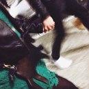 Маро Кекс фото #35