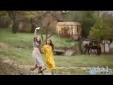 хорошая молдавская песня HD