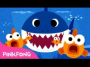 Baby Shark | Animal Songs