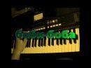 Гога - Боби боба (спецназ) на синтезаторе Yamaha PSR E433