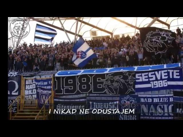 Zaprešić Boys - Moj Dinamo