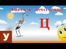 Алфавит Читать Учим с Кругляшиком Буквы и Звуки - Буква Ц