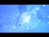 P.M. Dawn - Set Adrift on Memory Bliss (1991)