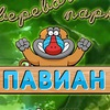"""Веревочный парк """"Павиан"""" г.Владимир"""