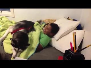 Нет, не трогай одеяло! Пусть спит...