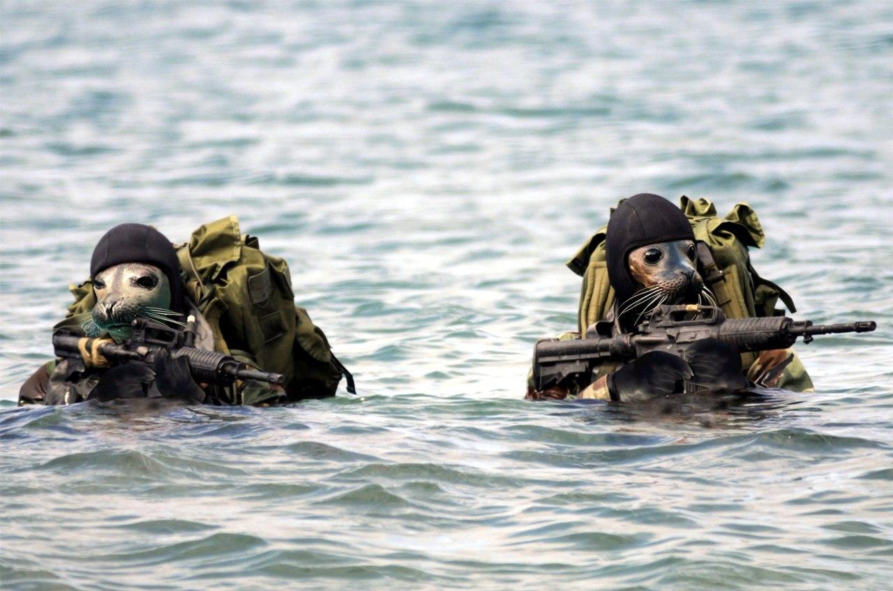 Немецкие СМИ высмеяли американский спецназ