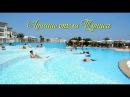 Лучшие отели Туниса Отличное сочетание цены и качества