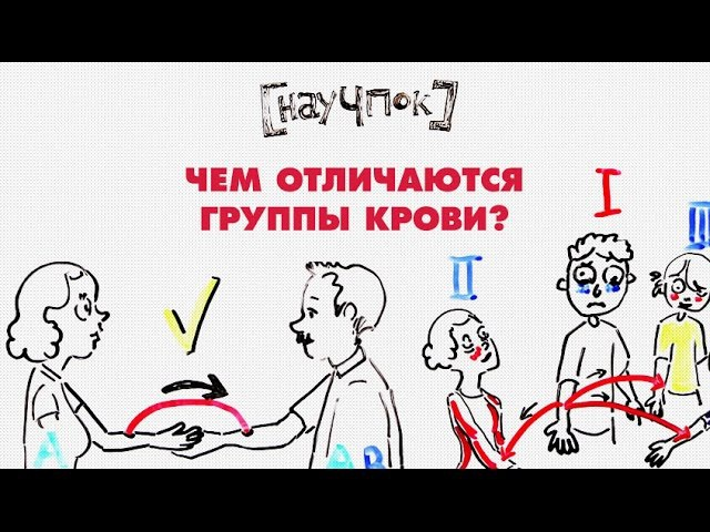 Чем отличаются группы крови xtv uheggs rhjdb