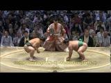 Sumo -Nagoya Basho 2016 Day 6, July 15th -大相撲名古屋場所 2016年 6日