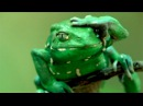 Frog applies 'sun cream' - Natural World: Attenborough's Fabulous Frogs - BBC Two