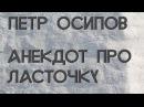 БМ ТВ. Петр Осипов. Анекдот про ласточку 24.09.2015