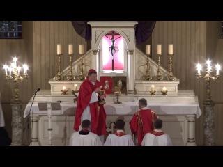 Kristus Ciešanu Dievkalpojums Sv.Jēkaba Katedrālē 25.03.16. 15.00 2. 1.