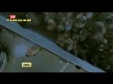 Промо + Ссылка на 6 сезон 1 серия - Ходячие мертвецы / The Walking Dead