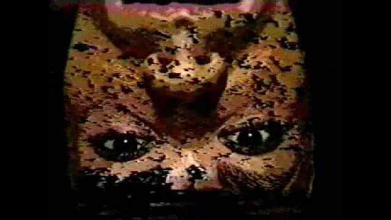 Сумерки / Twilight (1998) Мэтью Якобоски, Том Чомонт / Matthew Yakobosky Tom Chomont