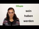 Урок №12: Глаголы ‹sein›, ‹haben›, ‹werden› | НЕМЕЦКИЙ ЯЗЫК ИЗ ГЕРМАНИИ