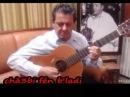 Mourad Fergani Le Maître de la Guitare Malouf