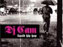 Dj Cam - Love junkee Feat Cameo and J Dilla (J Dilla Remix)