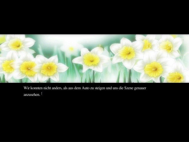 Narcissu / Нарциссы [2005/RUS]