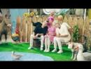 Город Ангел Бэби - Утро в деревне, или как говорят животные - Песенки для детей