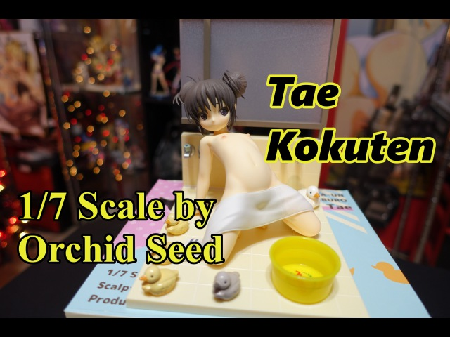 Comic Aun - Kokuten Tae 1/7 scale Unboxing/Review by Orchid Seed