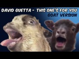 David Guetta ft. Zara Larsson - This One's For You GOAT VERSION