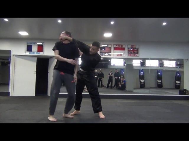 Pencak Silat Hugo Tronche - Hands motion training