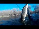 Подводная охота на крупную щуку в чистой воде!