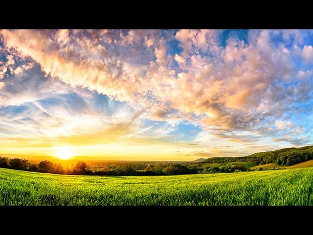 6 Hour Ambient Soundscape Relaxing Nature Summer Sounds - An English Country Meadow