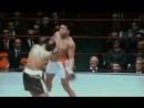 Реакция и скорость Мухамеда Али