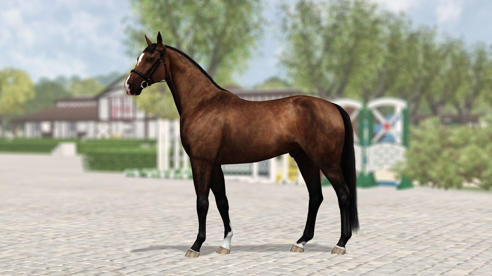 Регистрация лошадей в RHF 2 KPqcFtE4kAc