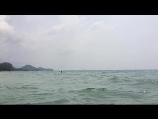 Поездка на White sand beach!