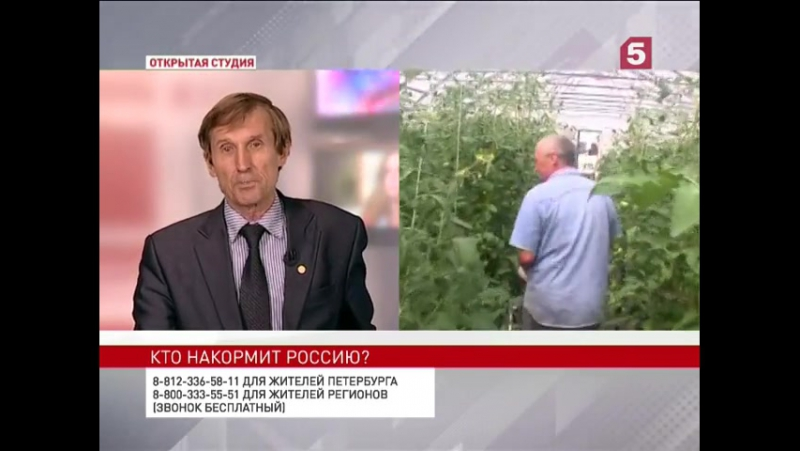 24.09.15-«Кто накормит Россию?»-Открытая студия- 5 канал