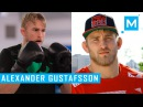 Alexander Gustafsson Pad Work Conditioning Training | Muscle Madness