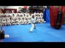 2016 01 18 Shihan Jesús Talán Shinkyokushinkai Kata SEIENCHIN SHIHAN