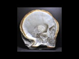 SKULL SHELL - GREGORY HALILI