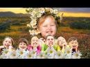 А ромашковое поле зацвело. Н. Май, русский текст Л. В. Кириллова, исп. Ю. Селиверст...