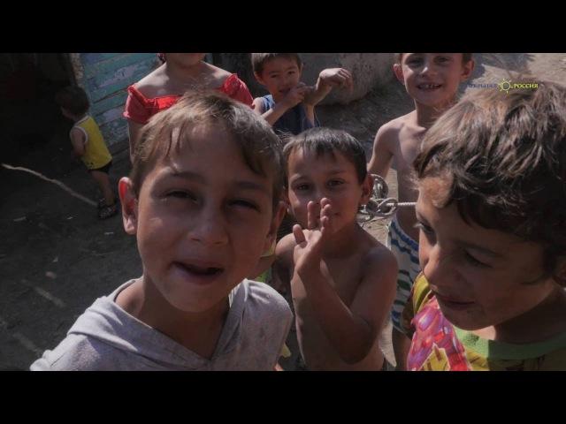 Табор уходит как власти сносят цыганские поселения по всей России