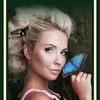 Бабочки Хабаровск