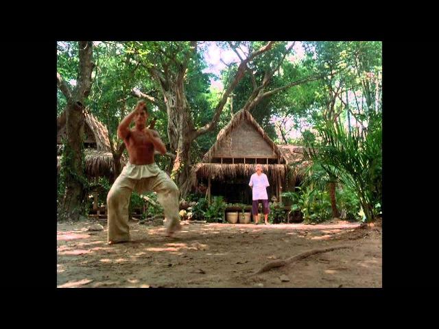Kickboxer (1989) - The Tree scene Training sequences HD - VAN DAMME