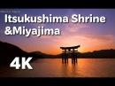 [4K] 宮島と厳島神社 世界遺産 ltsukushima Shrine Miyajima World Heritage 宮島観光 広島観光 Hiro
